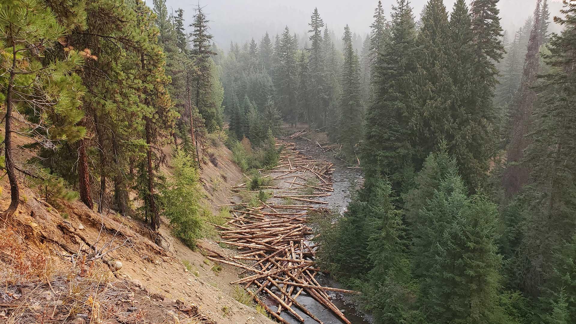 NF Teanaway Wood replenishment – Mid Columbia FEG