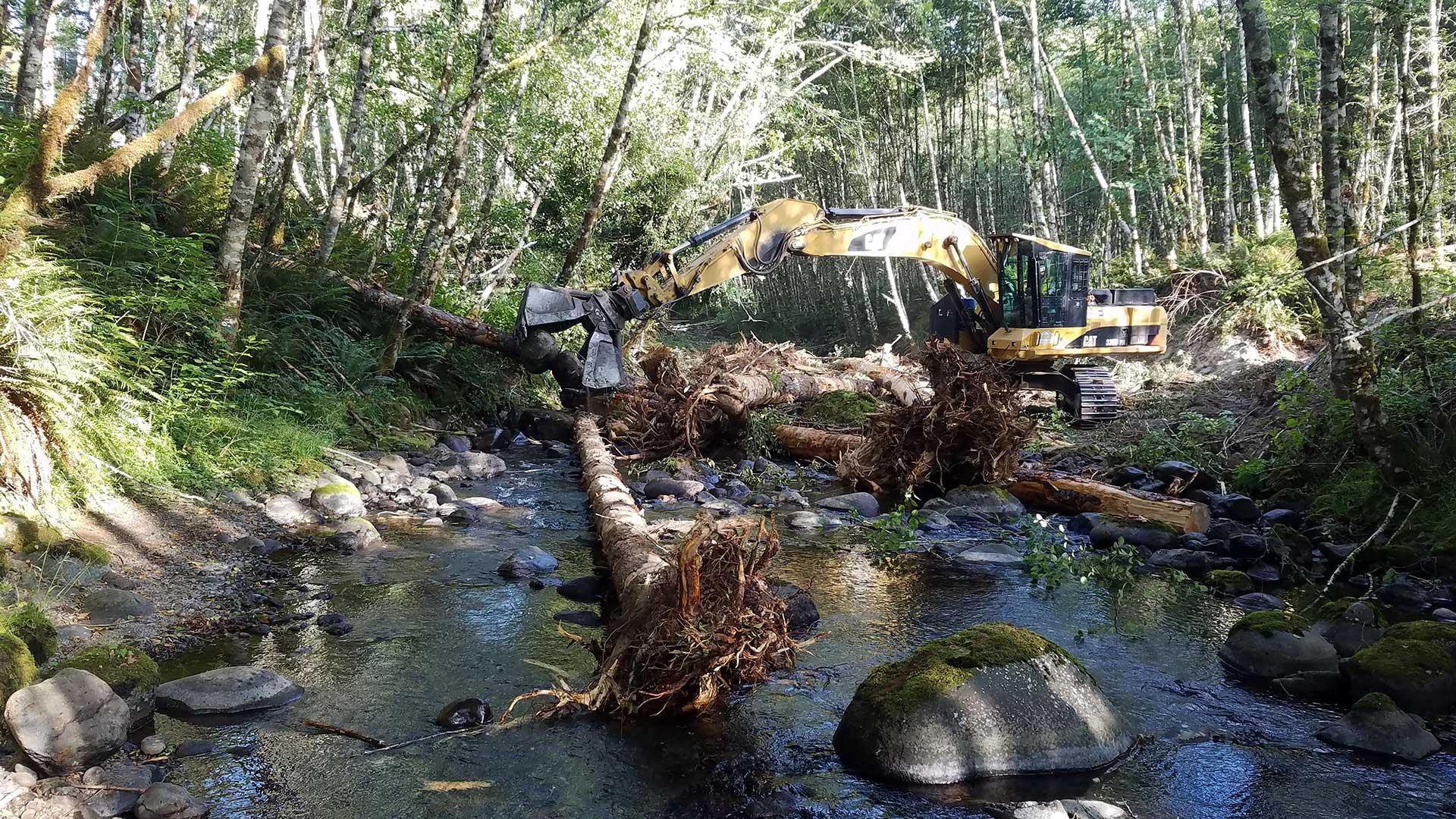 Bear Creek Restoration – Lower Columbia FEG